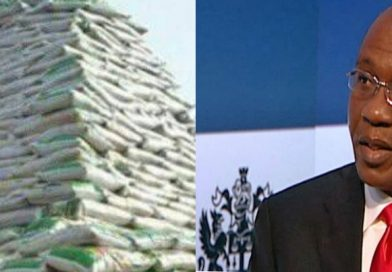 Emefiele charges Nigerians to Enhance Agriculture, Unveils Rice Pyramids